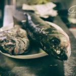 pescaderia 4